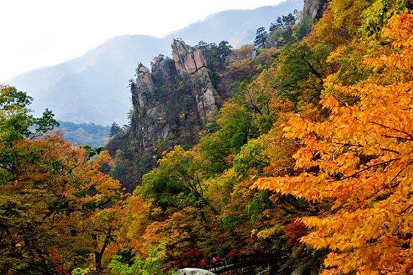 Autumn Foliage in Seoraksan National Park